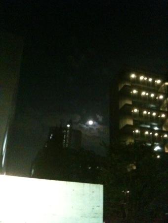 奥さん!お月見ですよ